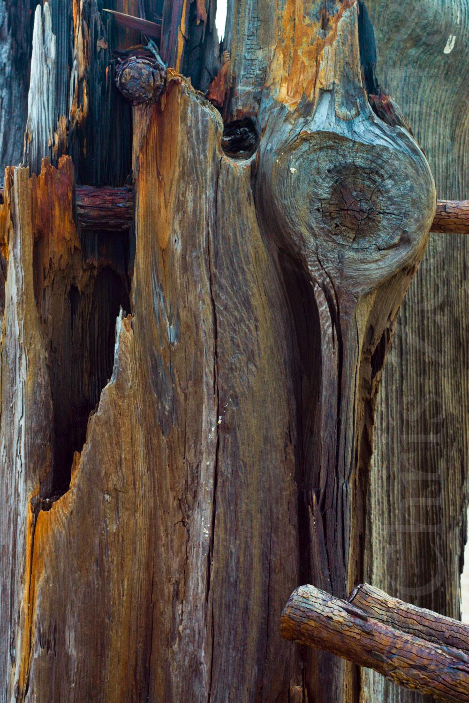 """""""Wood Study I"""", 2014"""