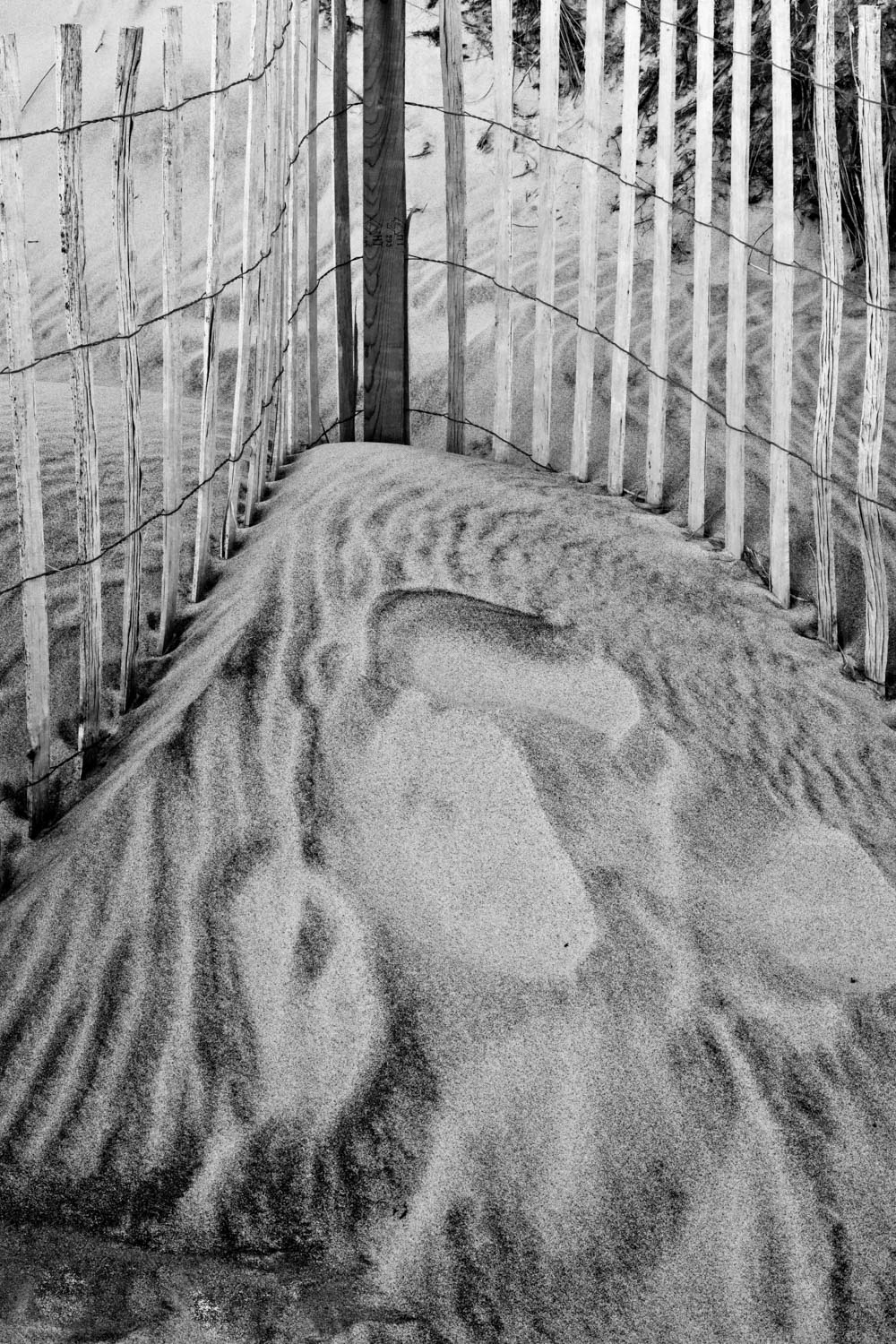 """Dune in Grayscale"", 2012"