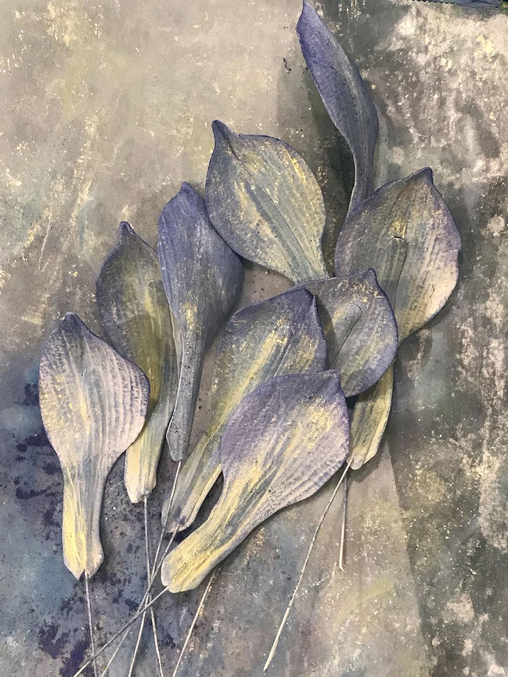 iris petalsMG_0588.jpg