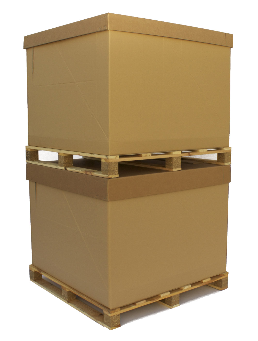 papcontainer.jpg