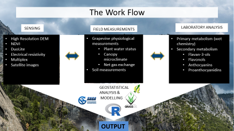 Figure 2. Workflow at the research site.