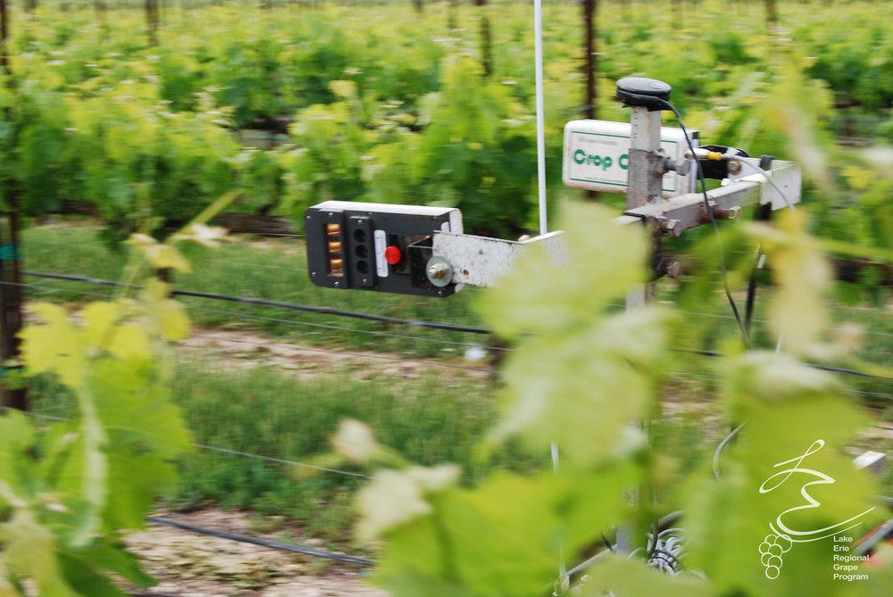 publications for efficient vineyard -
