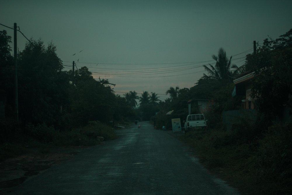 Monsoon - IMG_7899.jpg