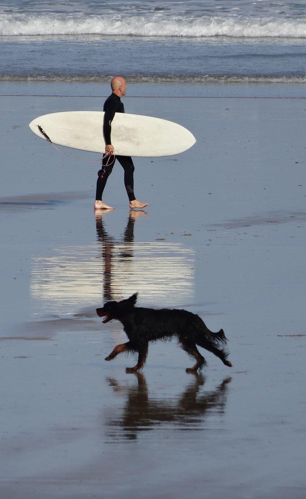 Basque coast | surfeur | a dog meets a surfer on the beach | Atlantic ocean |©sandrine cohen