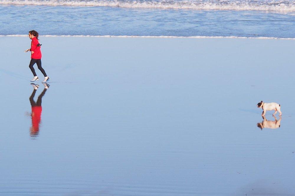 Atlantic coast | Jogger and his dog on the beach | France |©sandrine cohen