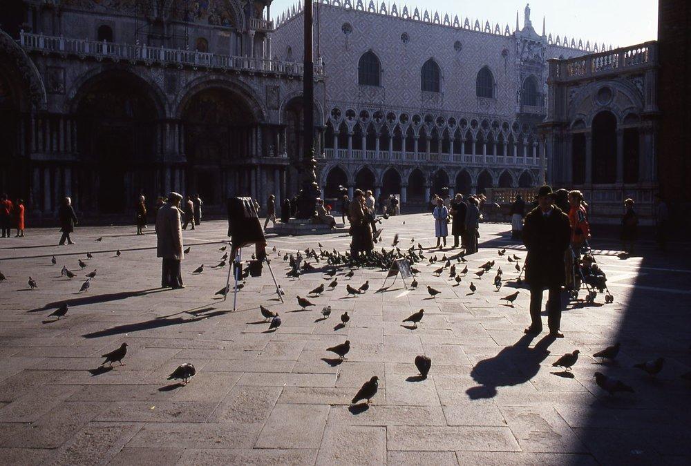 Venice | Pigeons on Saint Marc place  | photo sandrine cohen