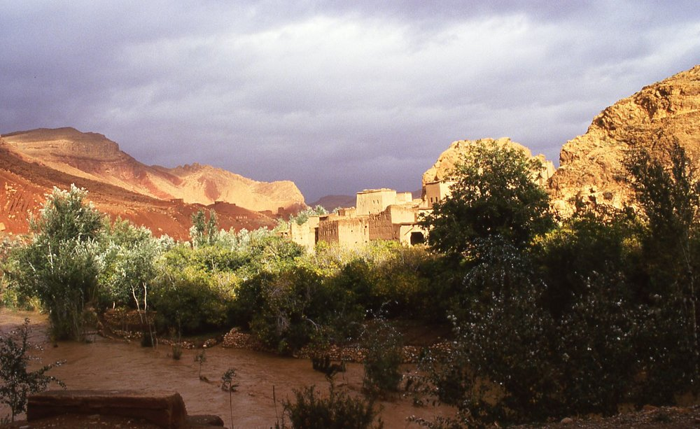 Morocco | Oasis in landscape after the rain | photo sandrine cohen