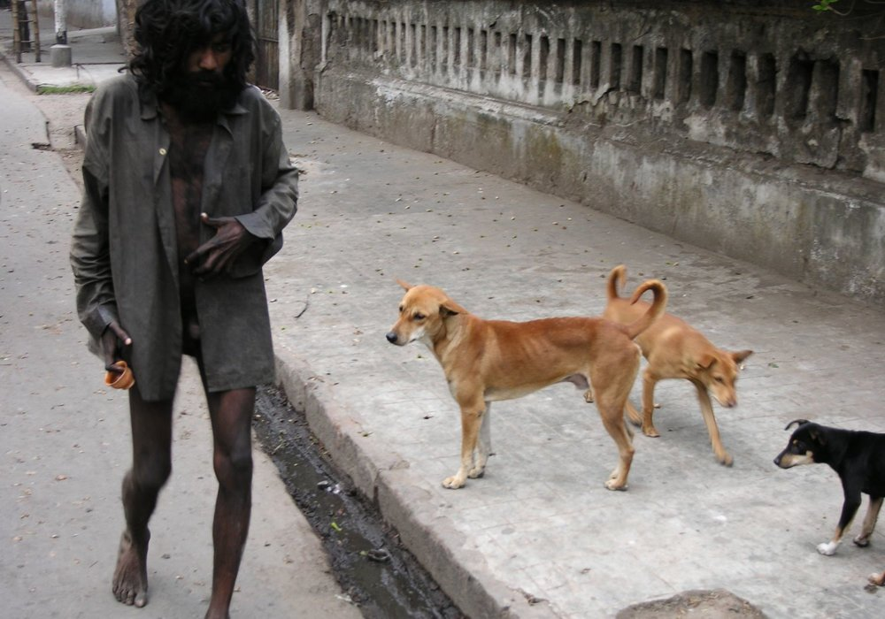 Kolkata - Calcutta | Homeless naked and street dogs | ©sandrine cohen