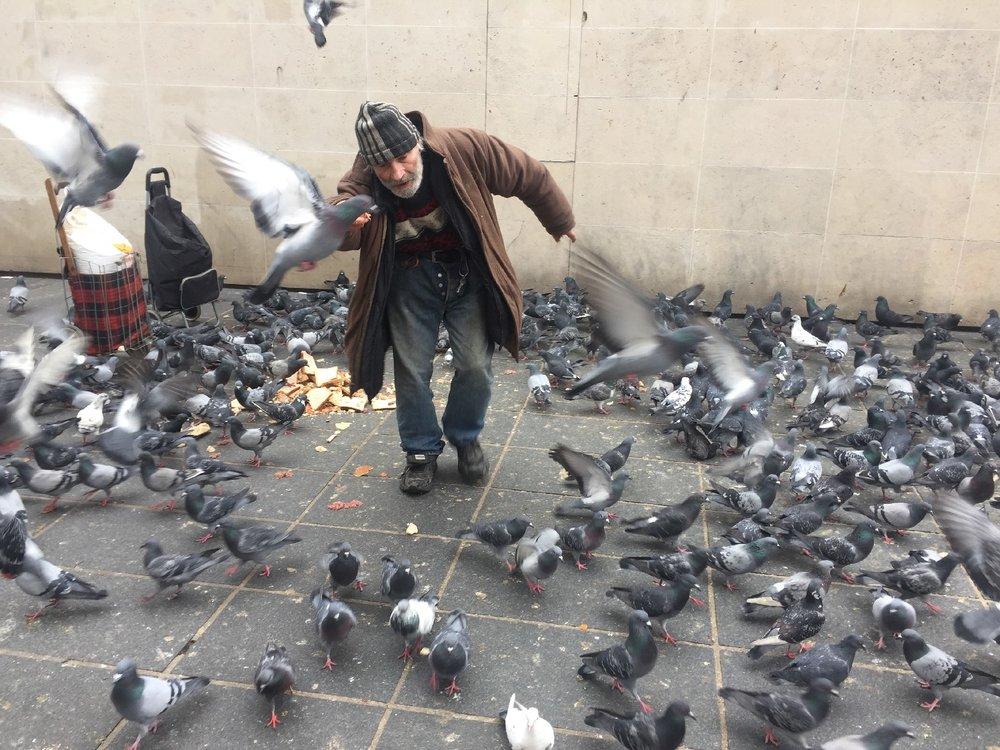 Paris | L'homme aux pigeons | Birdman | photo sandrine cohen