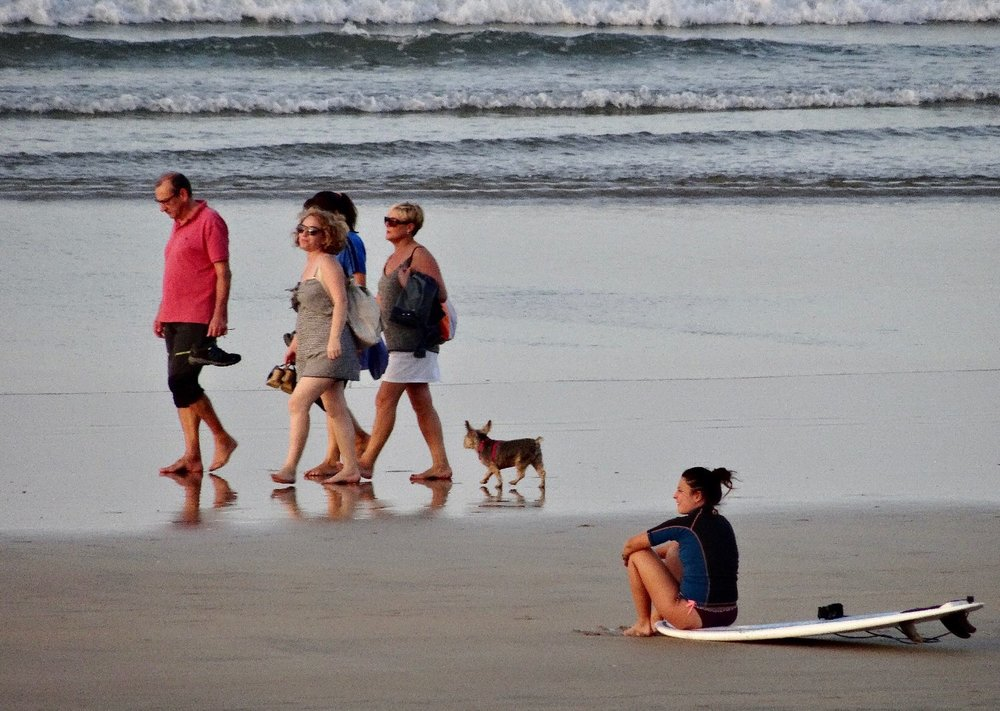 Hendaye Plage | Les deux jumeaux | Walkers with dog on the beach | surfer sitting on his surfboard | photo sandrine cohen