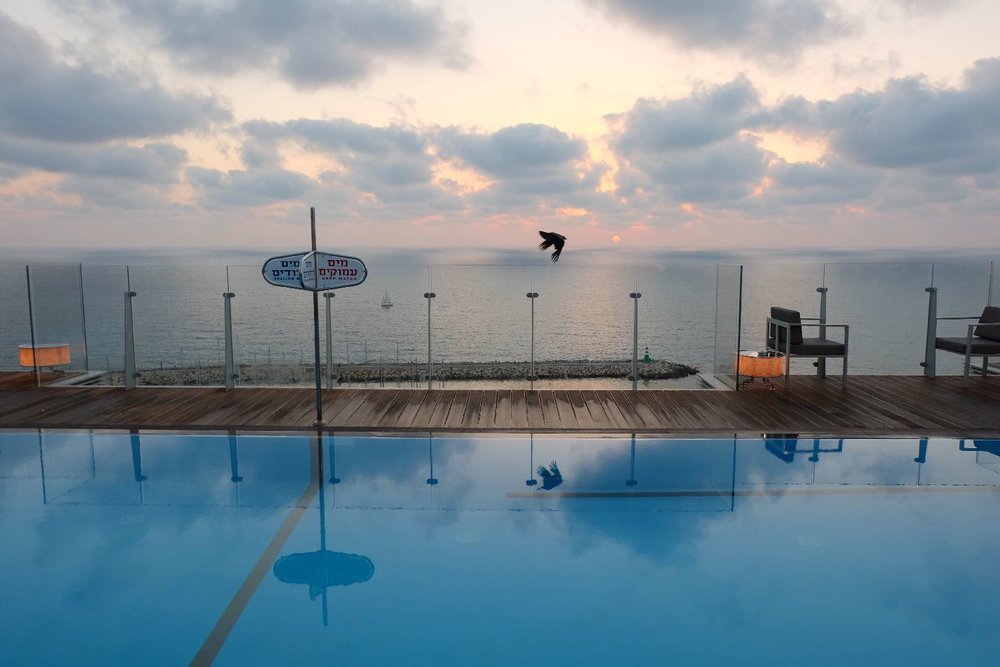 Tel-Aviv | swimming pool Carlton Hotel Tel Aviv | |Mediterrannean sea | photo sandrine cohen