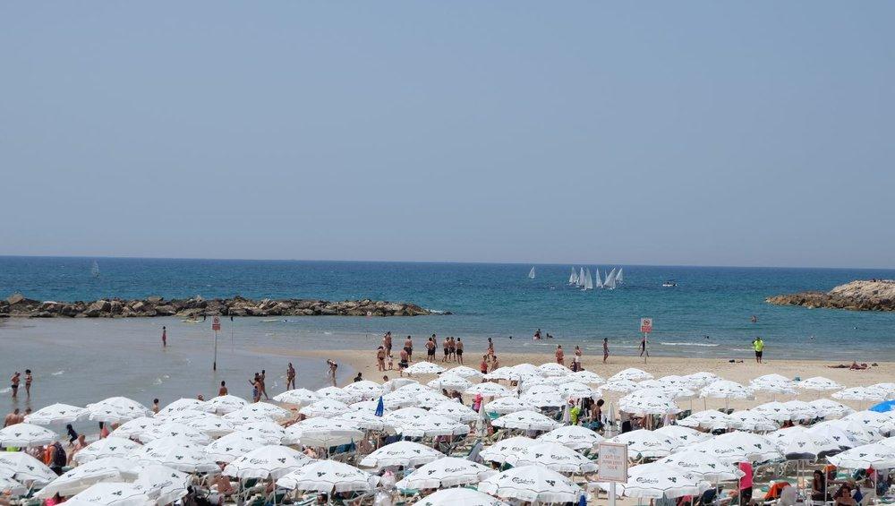 Tel-Aviv | White parasols | photo sandrine cohen