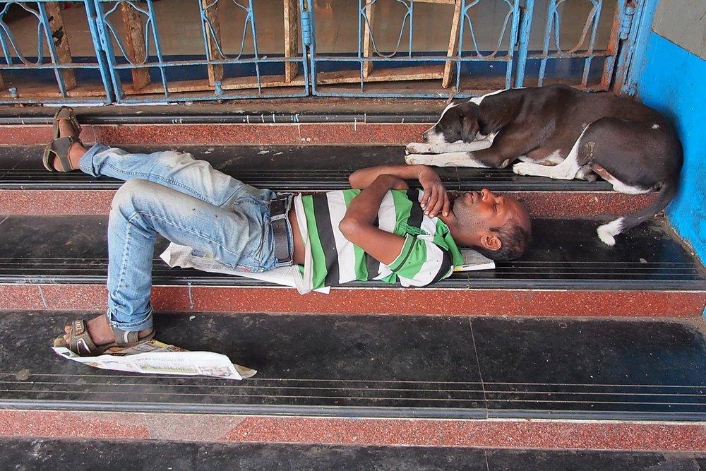Dog and man sleeping in the street of Mumbai | Bombay | India | photo sandrine cohen