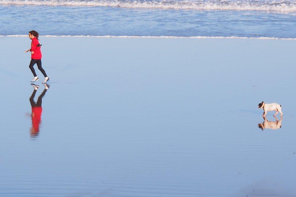 Jogger et son chien sur la plage | Hendaye | photo sandrine cohen