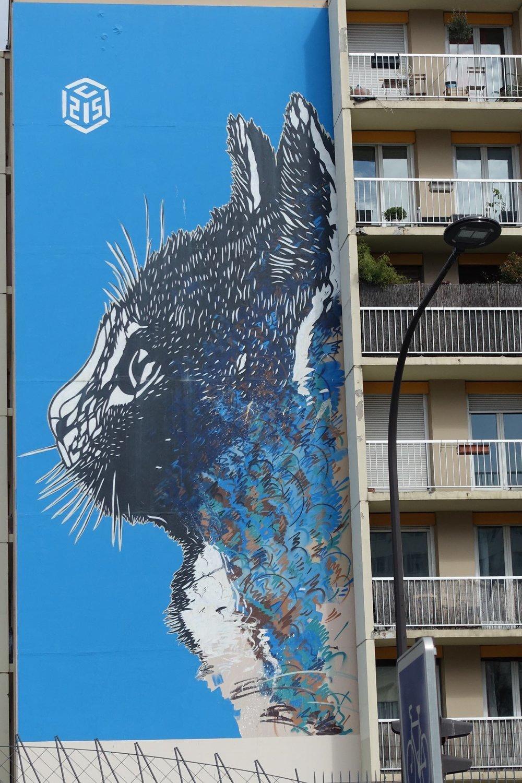 Street art chat | Artist Christian Guemy C215 | Paris 13e | photo sandrine cohen