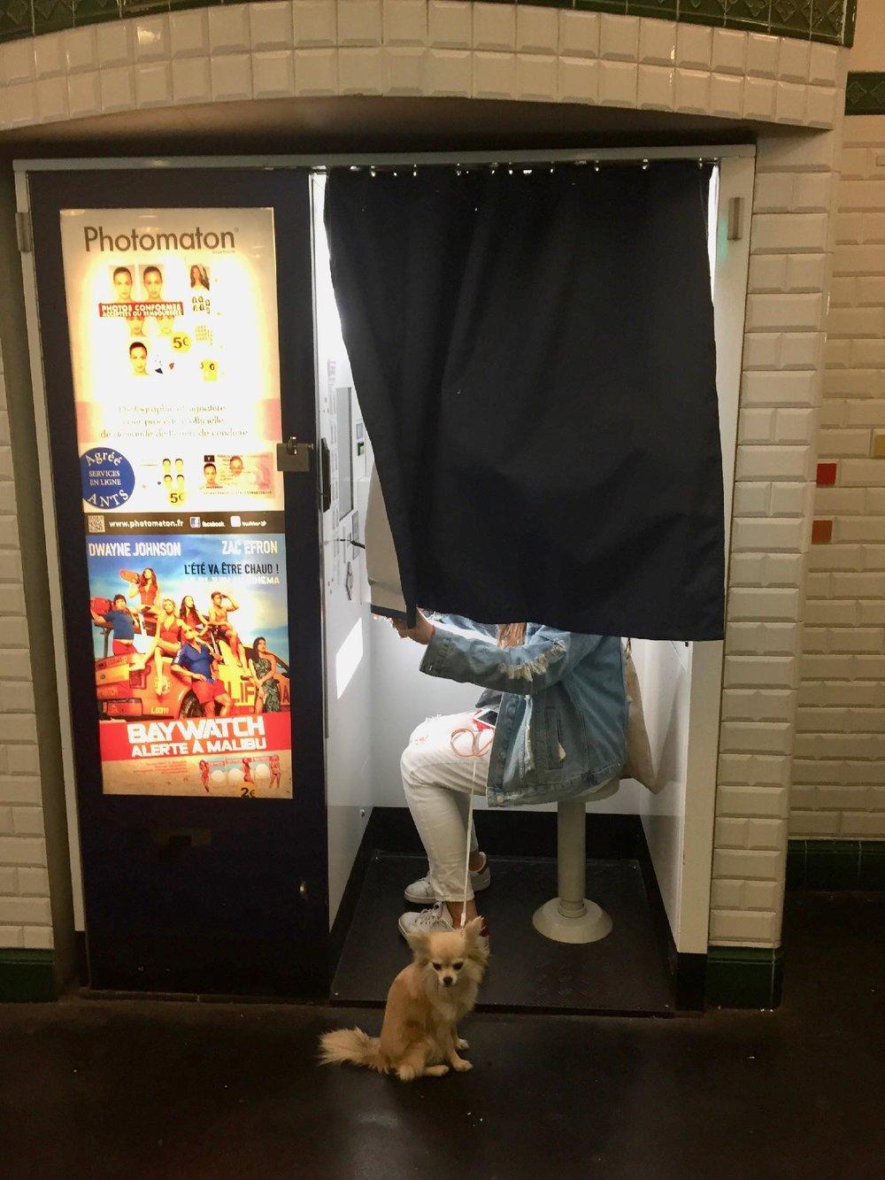 Chien devant photomaton | Métro Paris | photo sandrine cohen