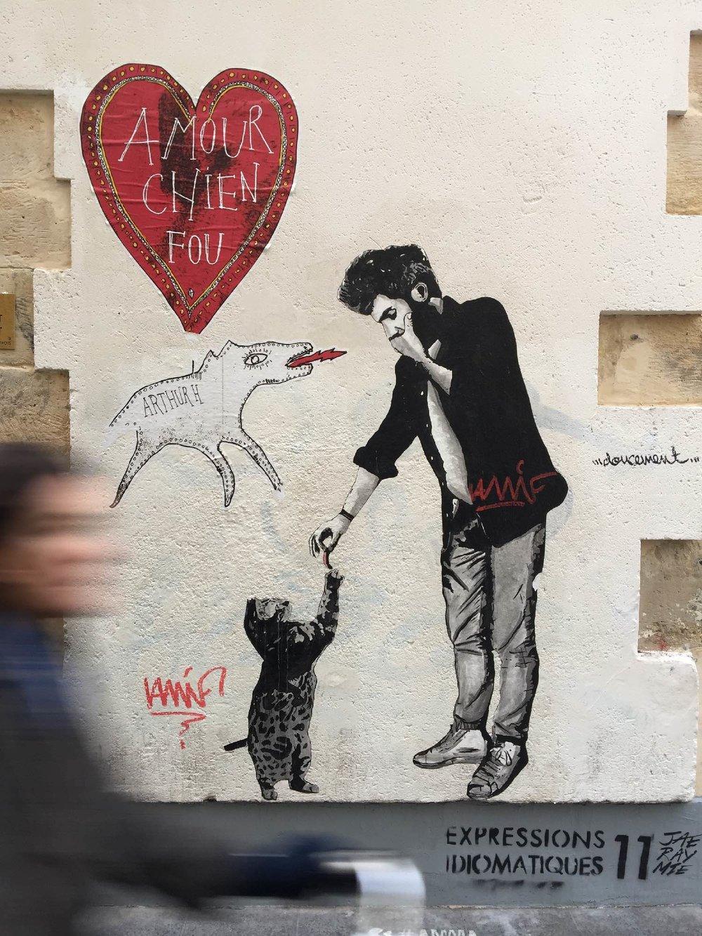 amour chien 1.jpg
