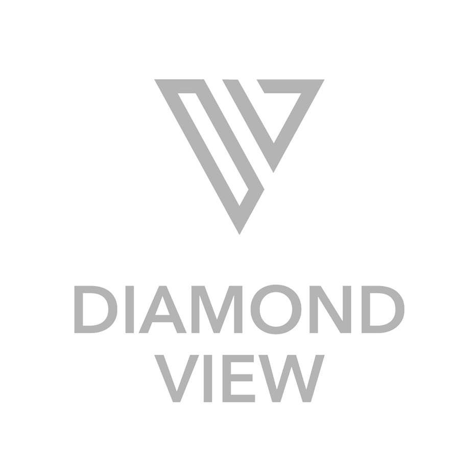 Diamond View Logo.jpg