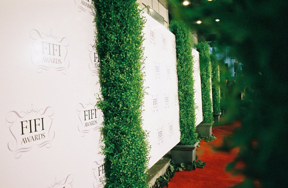Fifi Awards Red Carpet