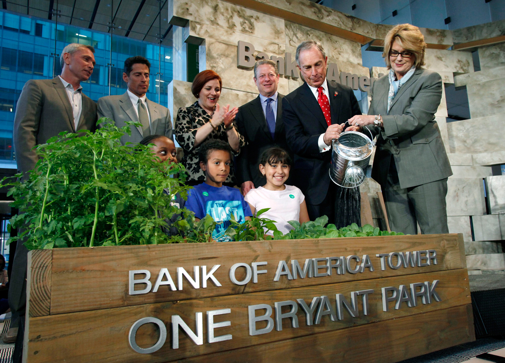 Bank of America Building Grand Opening