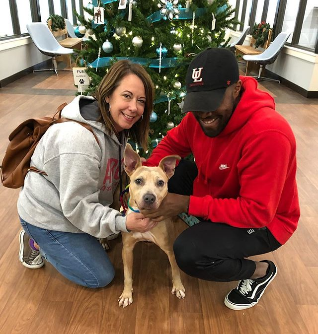 After six months of patiently waiting to become someone's new best friend, Madison has FINALLY been adopted today!! Help the many other dogs in our care by donating online at caabr.org/donate 🐶🐾