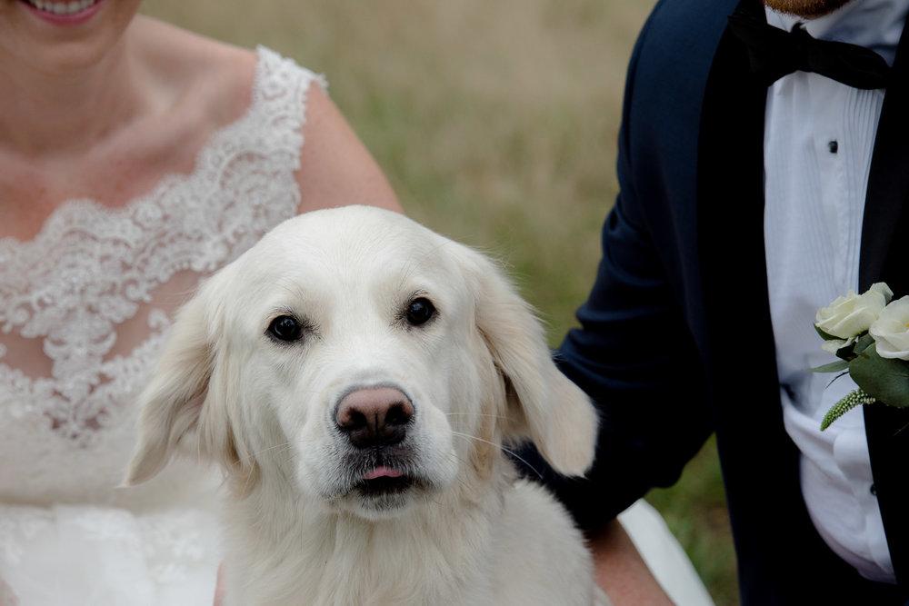 bryllupsfotograf-tonsberg-vestfold_ (56 of 108).JPG
