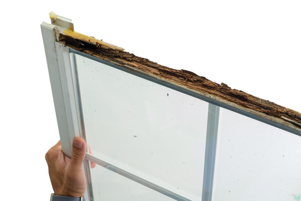 home window remodeling.jpg