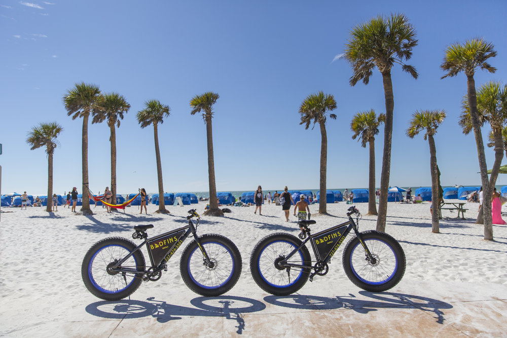 Bikes and Palm Trees on Clearwater Beach.jpg