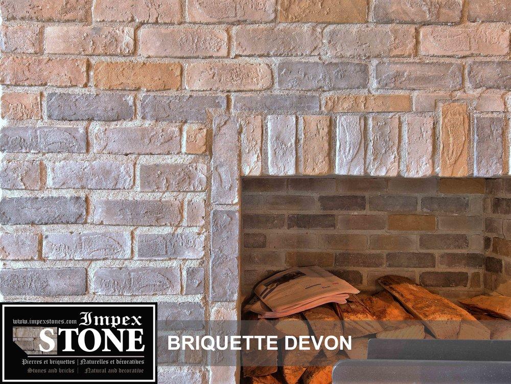 Briquette Devon-foyer.jpg