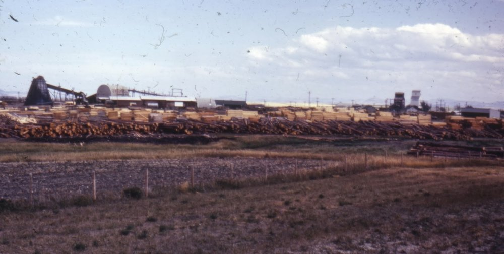 Johnson Brothers facility, Cowley.  Courtesy the Galt Museum & Archives: 199910805827.