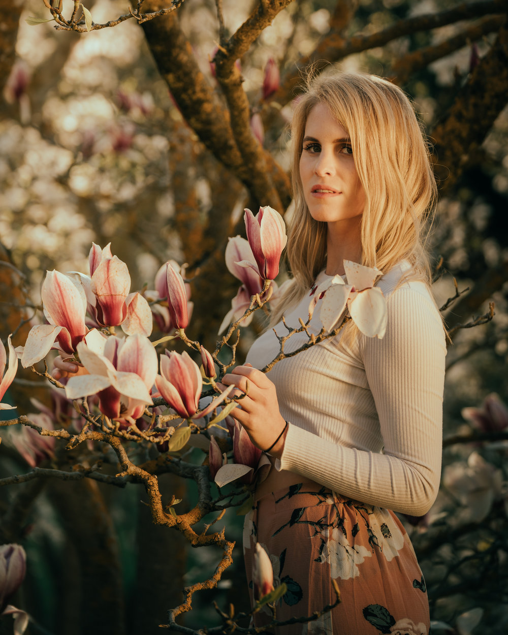 Mt lofty portrait session with Celia and Michelle in the beautiful Sakura bloom 2018