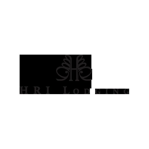 Tenderling-Website-HRI-Lodging-logo.png