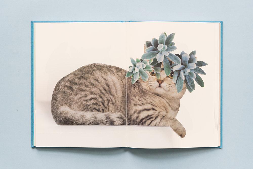 SE-Cats&PlantsBook-6.jpg