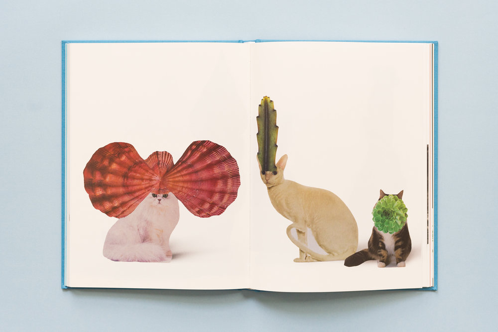 SE-Cats&PlantsBook-7.jpg