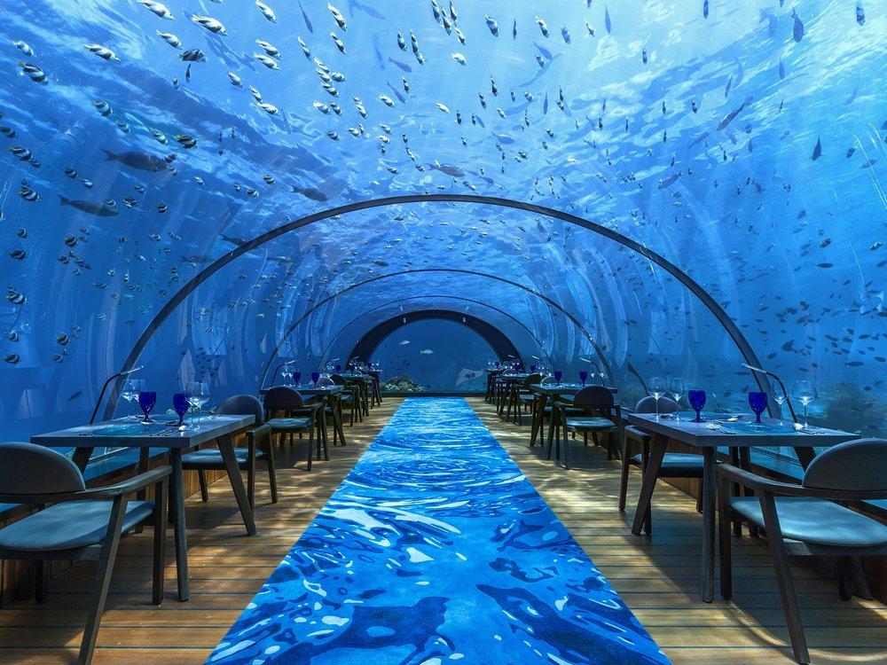 Hurawalhi5.8 Undersea Restaurant_small.jpg