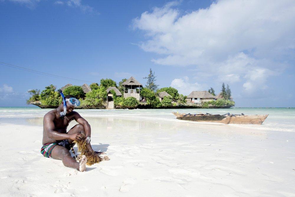 DISCOVERTHE ISLAND PONGWE ZANZIBAR -