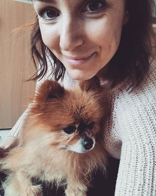 This little guy since 2009 🐕🐾❤️ #sosdog #rescuedog #indithepomeranian