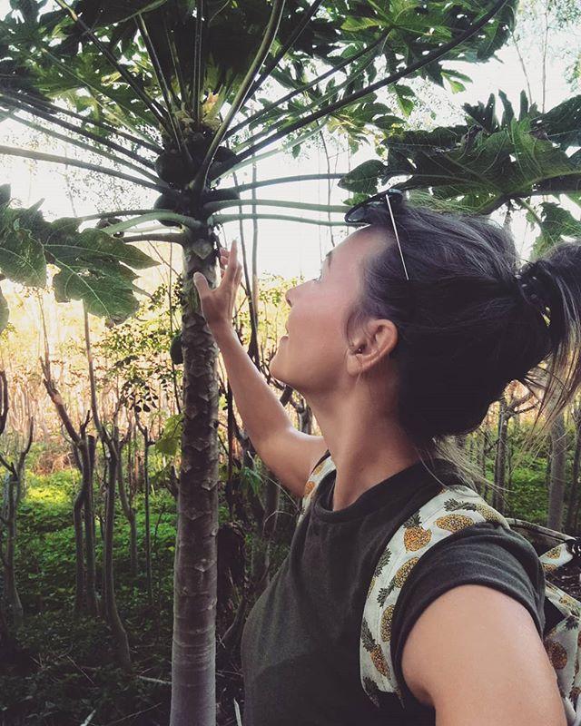 När det snöar den 31a mars tänker jag gladeligen tillbaka till sköna tider som öbo. Numera har jag bytt färsk papaya till #papayapeeling från @mariaakerbergofficial som jag jobbar med på salongen @solbackenshelhetshalsa i Linköping 😅🌴 Solsken är där du vill att det ska vara ☀️#drömjobb #ekologiskhudvårdsterapeut