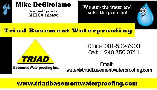 TRiad Business card 2018.jpg