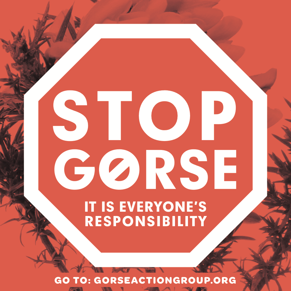 stop gorse.png