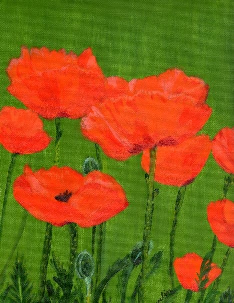 """Poppies"",  16"" x 20"" acrylic on canvas"