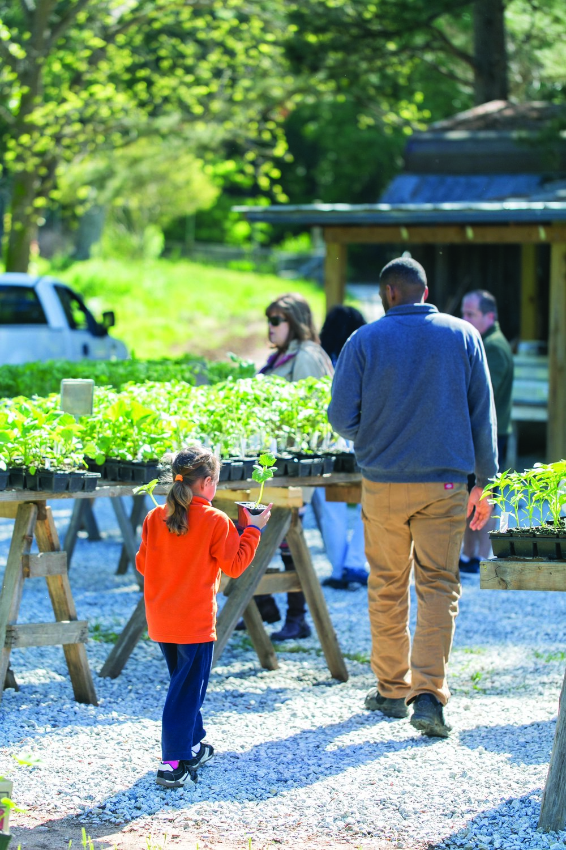 Farm Plant SaleTour-0078.jpg
