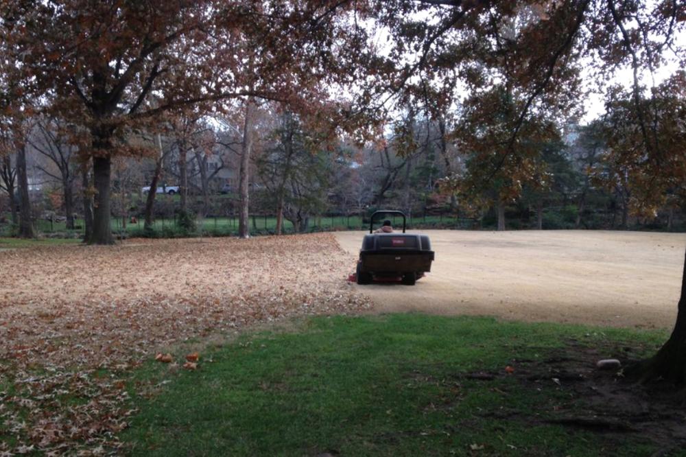 Lawn Maintenance -