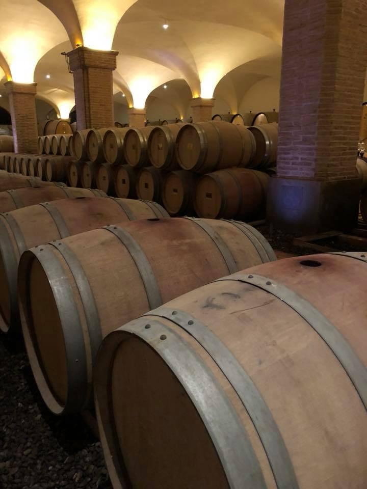 barrels Castiglion 1.jpg