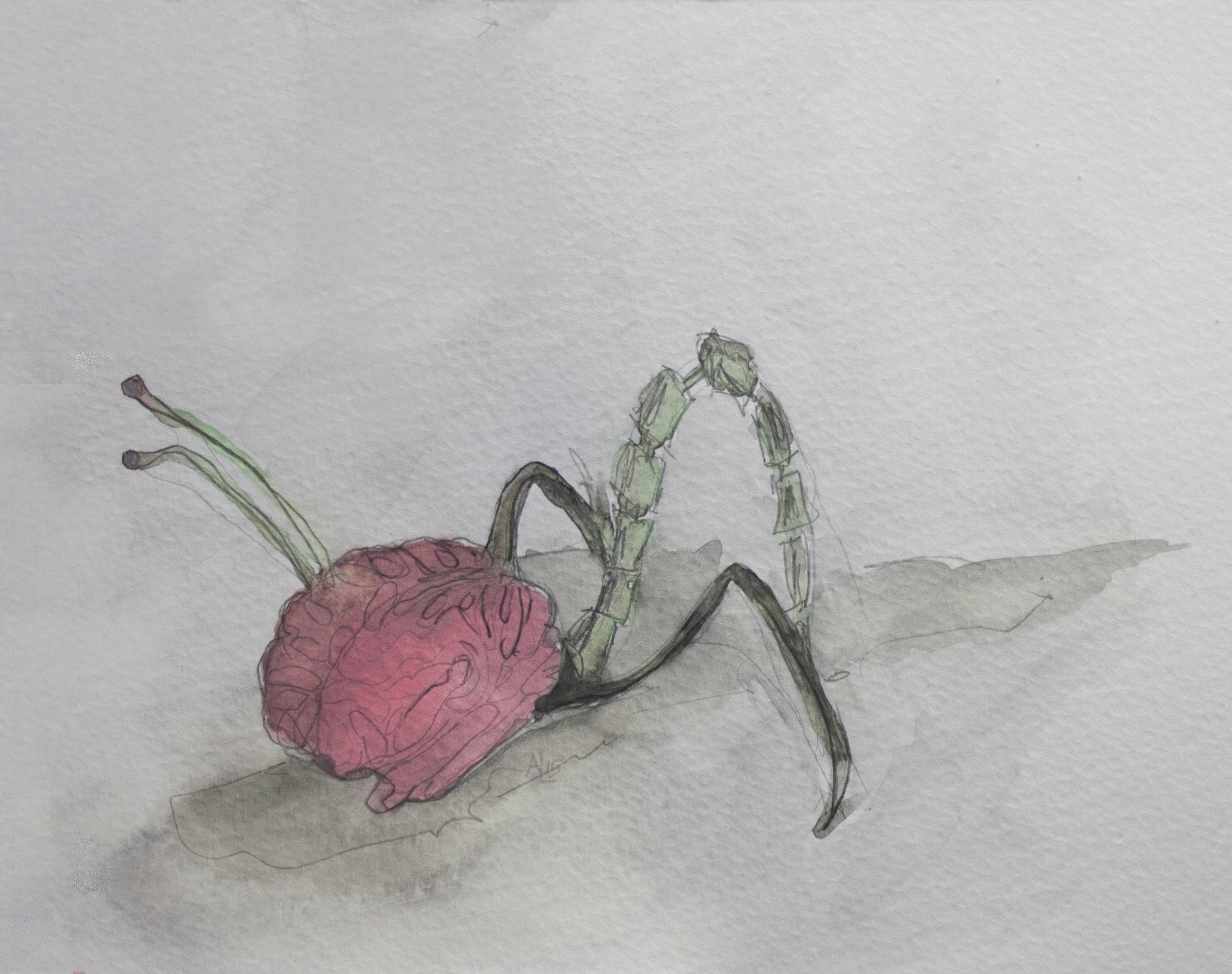 Zombie Brain Watercolor Art