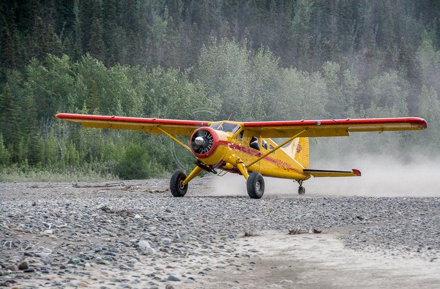 Beaver in backcountry landing strip at takeoff