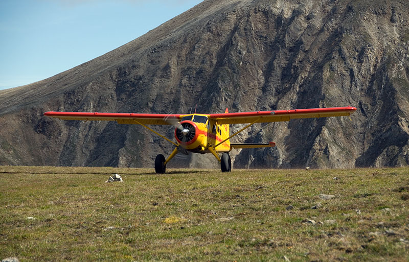 Beaver landing at Steamboat for backpacking pickup or drop-off