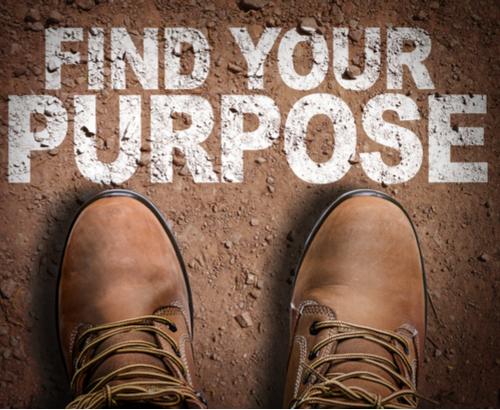 Find Your Purpose.jpg