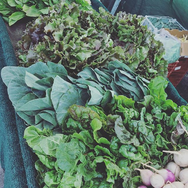 Greens!!! . Come get all the leafy greens you need Tomorrow from 9-1pm at the San Clemente Certified Farmer's Market. . . . #sanclementefarmersmarket #sanclemente #certifiedfarmersmarket #beachcities