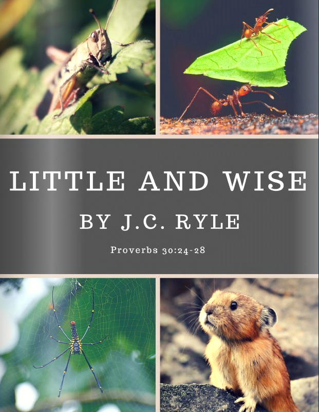 Little and Wise - By J.C. Ryle